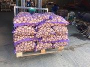 Картофель оптом с доставкой по всей России